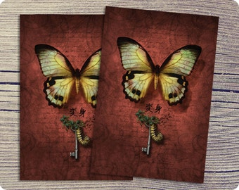 Postcard  Colorful Butterfly Surreal Nature Fantasy Nature Art Metamorphosis