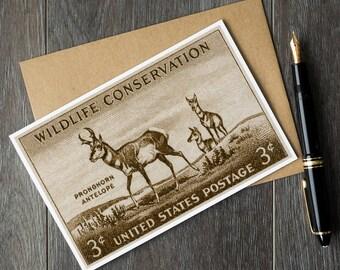 Antelope cards, antelope gifts, animal greeting cards, hunter gifts, hunter cards, hunting gifts, lodge art, wildlife cards, animal card set