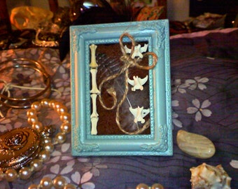 Small Frame with Bones and Feather