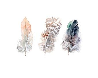 Feathers print, modern interior home decor, 8x10 fine art print of original watercolor