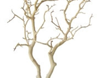 Sandblasted Manzanita Branches - 24 inches tall, 2 pieces