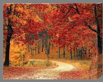 Beautiful Autumn Canvas