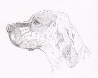 English Setter Signed Personalized Original Pencil Drawing Double Matted Print -Free Shipping- Desert Impressions