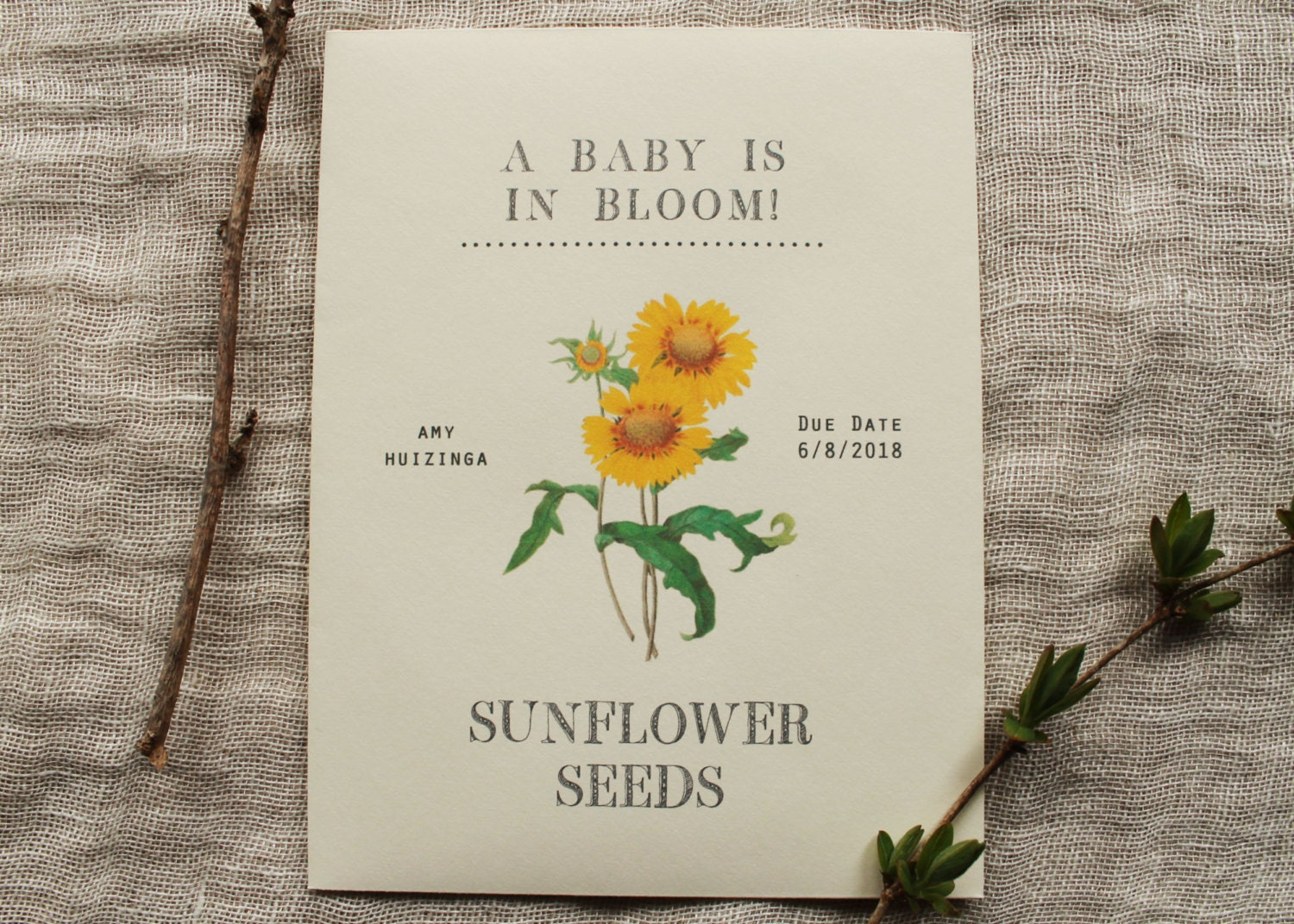 Sunflower Seed Envelopes Spring Wedding Favors for Guests