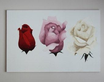 Analogous Roses