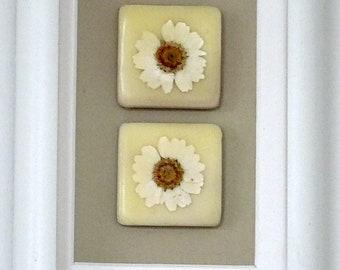 Pressed Daisy Encaustic Tiles - Framed