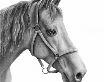 Custom Horse Drawing, Horse Portrait Custom, Custom Pet Portrait, Horse Decor, Charcoal Portrait, Original Drawing, Personalized Portrait