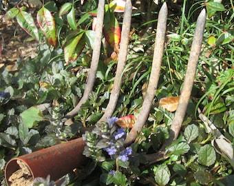 Vintage Hayneedle/ Curved Pitchfork - Four Tine Rusty Tool - Rustic Garden Art
