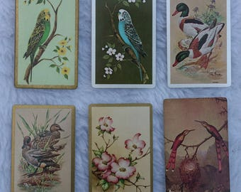 6 Vintage Playing Cards for ATC with parakeets, ducks, birds, dogwood