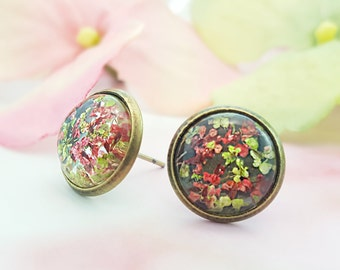 Pink and Green Flower Earrings, Dried Flower Stud Earrings, Moss, Dry Flower Petals, Botanical Jewelry, Floral Studs, Bronze Studs, E6505