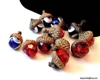 Red and Blue Acorn Cap Thumbtacks Push Pins 12 Acorn Pushpins 14mm Red Beads 12mm Blue Beads Natural Brown Acorn Caps