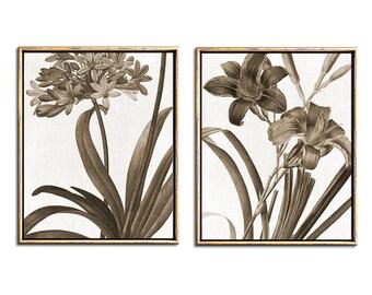 Vintage Botanical Print Set, Sepia Botanical, Downloadable Prints, Botanical Print Set Download, Sepia Prints, Rustic Wall Art, Printables