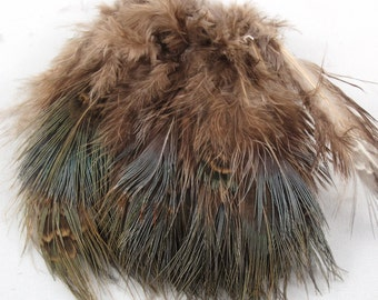 Ringneck pheasant Spey feathers natural green RPRS-02 craft feathers,fasinators, K148