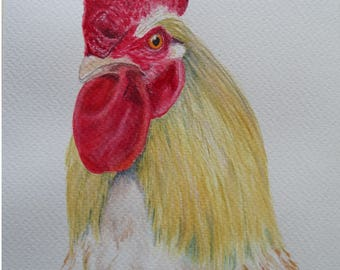 Water color painting rooster original animal pictures 7,8 x 5,9