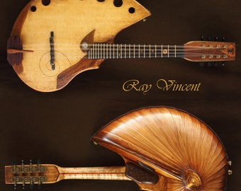Shell back Mandolin. Handmade acoustic musical instrument. Unique design.Nautilus shaped back