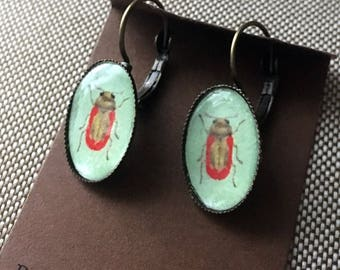 Beetle Earrings Green