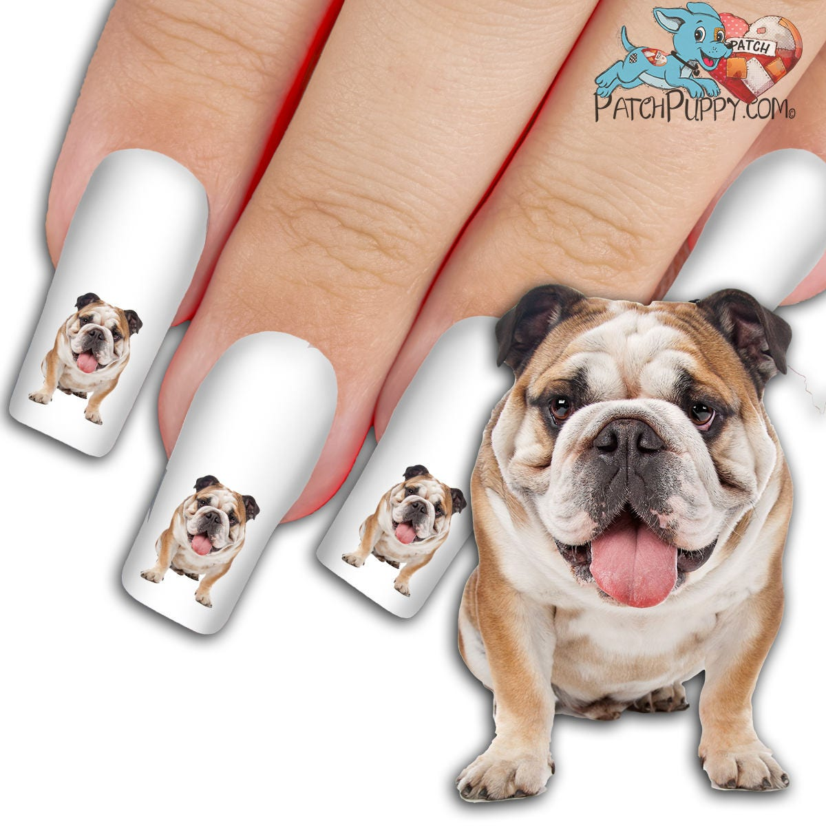 English Bulldog Woof Nail Art Kit Dog Nail Decals