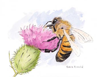 Honey Bee  Print of original artwork, Pen and Ink and Watercolor, animal,wildlife,nature,honey bee painting,thistle,insect,bee,flower,l