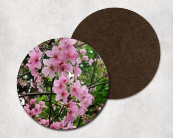 Cherry blossom coasters, cherry blossoms, photo print, pink flowers, housewarming, coaster set, floral, round coaster, floral decor, blossom