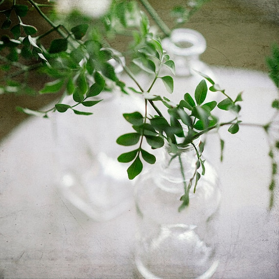 Botanical, Nature Print, Art, Photography, Still life, Home Decor, Photography Print, Boho Home Decor, Fresh Spring Art print