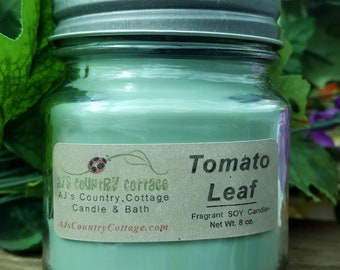 TOMATO LEAF SOY Candle - green candle, berry candle, leafy candle