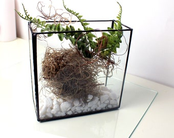 Geometric Glass Box Terrarium- Stained Glass Decor - Home Decor
