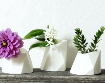 Succulent Planters / 3D printed planters / flower pots / minimal home decor / Set of three/ white vases/geometric pot