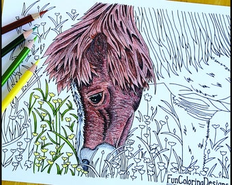 Coloring Page, Horse Eating Buttercups, Printable