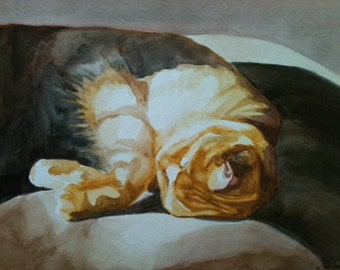 Orange Cat in Sunshine- 9x12 original watercolor