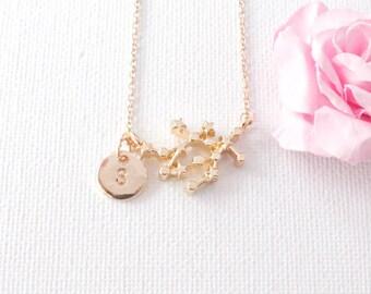 Gold Gemini Necklace, gemini jewelry, gemini, constellation jewelry, star sign necklace,star sign necklace, May and June birthday / SS003