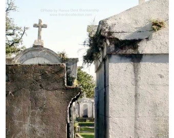 New Orleans Tombs Photograph