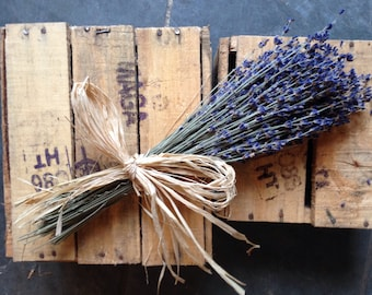 Dried English Lavender Bunch Tied With Raffia, Wedding Decor Pew End Scented English Flower Shop