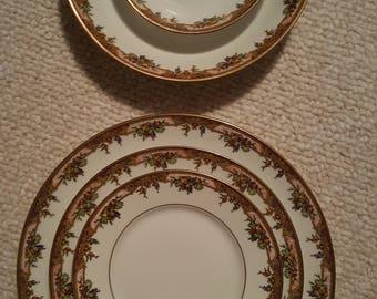 Limoges Coronet Vintage China Dinnerware set beautiful design France