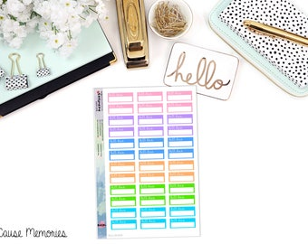 FUNCTIONAL BILL DUE Boxes Paper Planner Stickers - Mini Binder Sized/3 Hole Punched