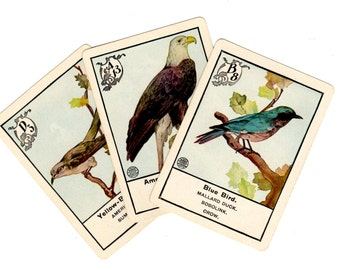 3 Early 1900s Antique Bird Game Cards - Mixed Media, Altered Art, Collage, Scrapbooking, Assemblage, Art Journal Supplies