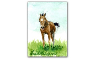 Brown Colt Horse Foal ACEO Minature Children Fairy Collectors Pony Free Shipping USA LLMartin
