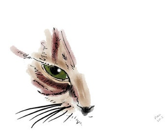Cat Greeting Card, Blank, Nutmeg Close-up Design No A6005