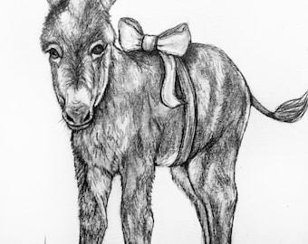 Original Pencil Drawing - Donkey 31
