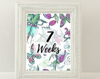 Pregnancy milestone cards - Week by week - Pregnancy gift - Shabby chic - Weeks 6-40 - Choose your size - Printable JPEG file.