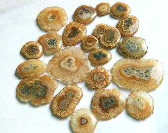brown Solar Quartz, Stalactite Slice, Natural Solar Quartz Slices, druzy solar quartz flower, brown solar, Druzy Agate