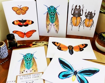 5 INSECT CARDS. 5 Kraft envelopes.
