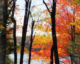 Autumn Lake - Ships Free