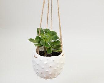 Moderne weiß hängen Blumentopf Keramik Blumentopf ~ hängende Pflanzen Topf stacheligen Bio moderne Blumentopf ~ Porzellan Keramik Sea Urchin Boho minimalistisch