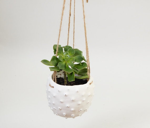 modern hanging planter white ceramic plant pot hanging plant. Black Bedroom Furniture Sets. Home Design Ideas