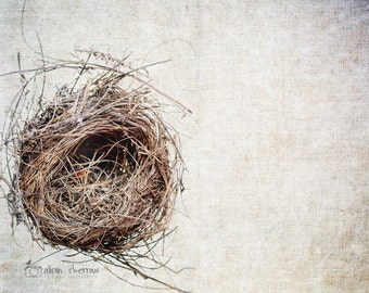 Bird's Nest Photograph, Rustic Farmhouse Prints, Gray Wall Art, Neutral Decor, Nest Print, Nature Photo, Housewarming Gift | 'Dwell'