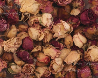 digital background/Ancient dried roses