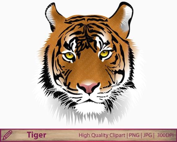 Tiger Clipart Wild Animal Clip Art Jungle Safari Graphics