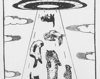 UFO cat abduction