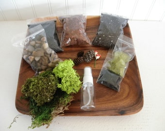 DIY - Woodland Terrarium Kit - Use your own Container