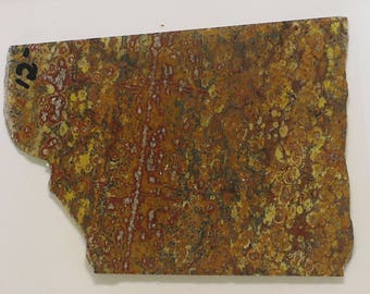 Leopard Skin Jasper Slab, Leopard Skin Jasper, Jasper Slab, Leopard Skin. Raw slab, Red and Yellow Slab, Leopard Jasper